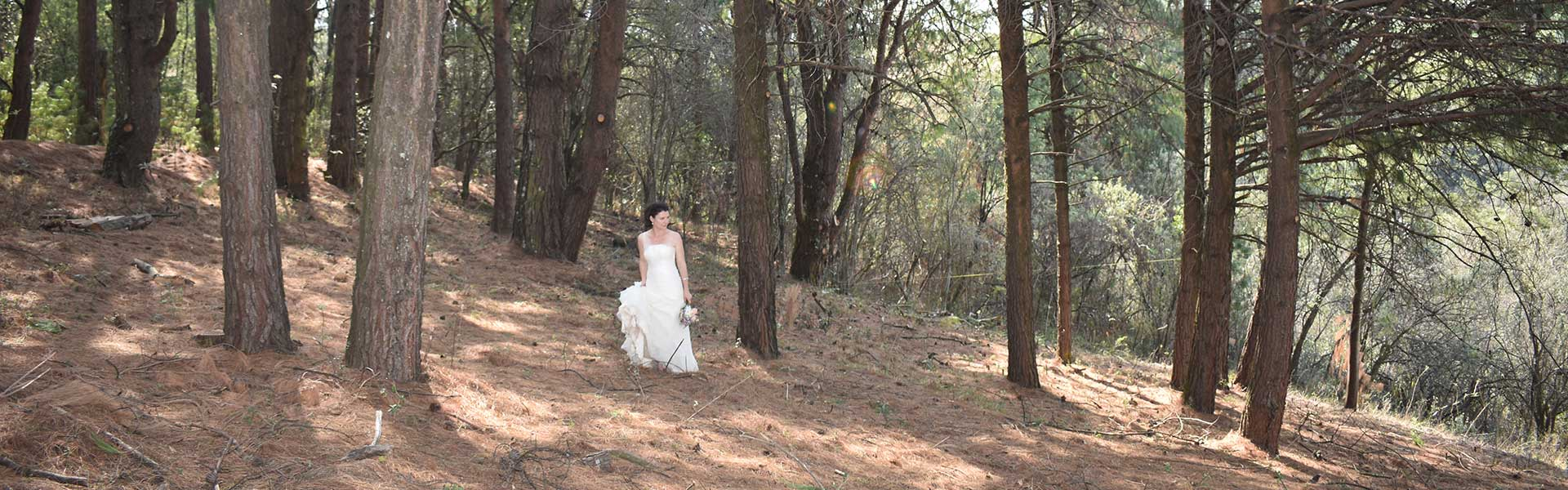 Wedding-Home-2